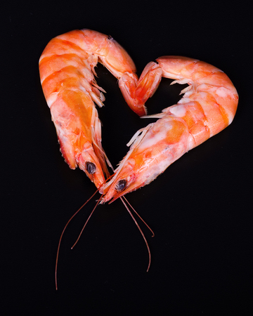whimsy: Two shrimps forming a heart in a black background