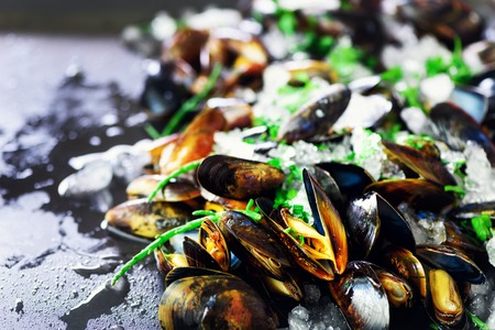 Mussels on stone concrete background. Top view, copy space Imagens