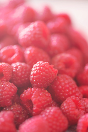 Ripe raspberries macro. Selective focus. Fruit background with copy space. Sunny summer and berries harvest concept. Sunlight effect. Vegan, vegetarian, raw food.