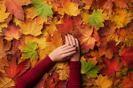 Female hand over autumn leaves background. Nail design concept Stockfoto - 111718856