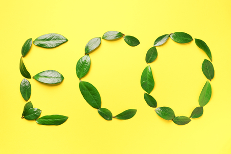 Word Eco made of green leaves on yellow background. Top view. Flat lay. Ecology, eco friendly planet and sustainable environment concept. Think green