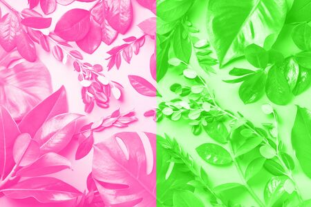 Creative layout made of tropical leaves in trendy neon pink and green colors. Flat lay. Top view. Mock up.