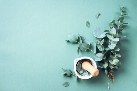 Foglie di eucalipto e mortaio bianco, pestello. Ingredienti per medicina alternativa e cosmetici naturali. Bellezza, concetto di spa. Archivio Fotografico