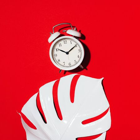White alarm clock and monstera leaf over red background. Wake up alert concept. Morning routine