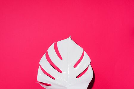 Summer composition. White tropical palm leaves on pink background. Summer concept. Flat lay, top view, copy space.