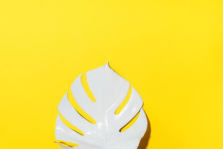 White painted monstera tropical leaf on yellow background. Summer minimal concept 스톡 콘텐츠