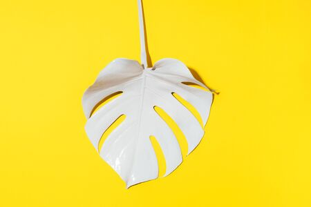Summer composition. White tropical palm leaves on yellow background. Summer concept. Flat lay, top view, copy space.