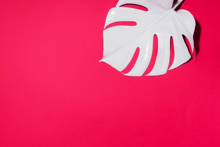 Summer composition. White tropical palm leaves on pink background. Summer concept. Flat lay, top view, copy space 스톡 콘텐츠