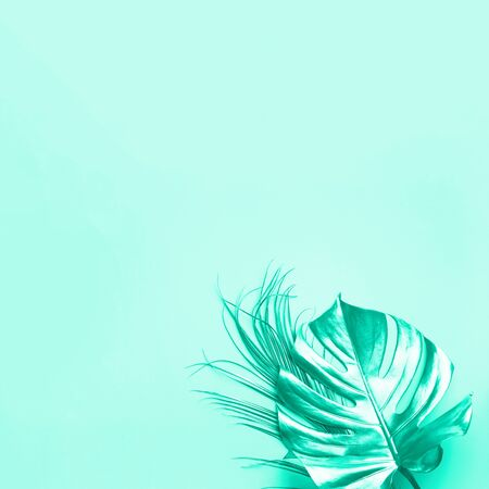 Floral minimal style concept. Exotic summer trend. Golden tropical palm monstera leaf on trendy green color background. Mint and turquoise color. Shiny and sparkle design, fashion concept