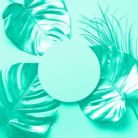Exotic summer trend in minimal style. Tropical palm monstera leaf on trendy green color background. Mint and turquoise color. Shiny and sparkle design, fashion concept