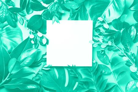 Creative layout made of tropical leaves in mint colors. Trendy green and turquoise color. Flat lay. Top view. Mock up.