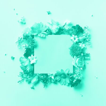 Frame of mint flowers over mint color background. Valentines day, Woman day concept. Trendy green and turquoise color. Spring or summer banner with copy space. Stok Fotoğraf