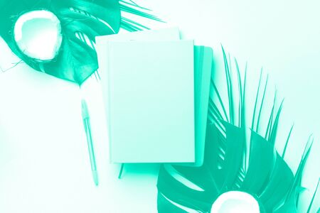 Female blog writer workspace concept. Green monstera palm leaves, coconut on trendy green and turquoise color. Mint color background with copy space. Banner. Flat lay, top view Reklamní fotografie
