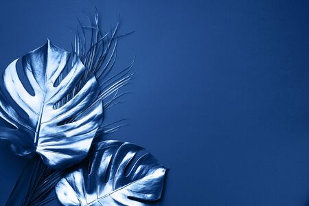 Exotic summer trend in minimal style. Tropical palm monstera leaf on classic blue color background. Shiny and sparkle design, fashion concept