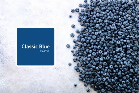 Fresh blueberries background with copy space for your text. Border design. Vegan and vegetarian concept. Summer healthy food. Texture of blueberry berries close up