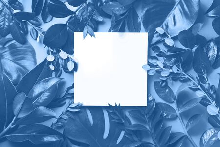 Creative layout made of tropical leaves in monochrome colors. Trendy blue and calm color. Flat lay. Top view. Mock up. Banco de Imagens - 135186674