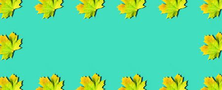 Golden autumn concept. Sunny day, warm weather. Frame with maple leaves on mint turquoise background with copy space. Top view. Colors of fall.