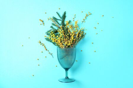 Wine glass with yellow mimosa flowers on blue background. Top view. Flat lay. Spring concept Banco de Imagens