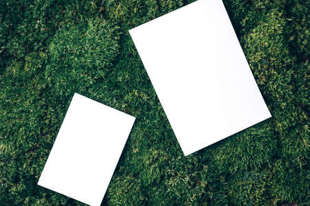 Creative layout made of square card note on green grass, moss background. Top view. Copy space. Advertising card, invitation. Wild nature, ecology concept. Sustainable, organic, zero waste lifestyle Foto de archivo