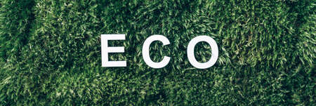 Word Eco on moss, green grass background. Top view. Copy space. Banner. Biophilia concept. Nature backdrop