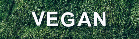 Word Vegan on moss, green grass background. Top view. Copy space. Banner. Biophilia concept. Nature backdrop. Healthy diet, eco friendly lifestyle, cruelty free Stockfoto