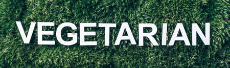 Word Vegetarian on moss, green grass background. Top view. Copy space. Banner. Biophilia concept. Nature backdrop. Healthy diet, eco friendly lifestyle, cruelty free