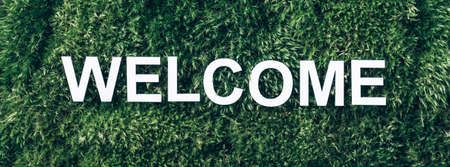 Word Welcome on moss, green grass background. Top view. Copy space. Banner. Biophilia concept. Nature backdrop