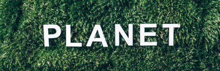 Word Planet on moss, green grass background. Top view. Copy space. Banner. Biophilia concept. Nature backdrop