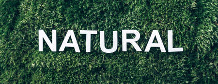 Word Natural on moss, green grass background. Top view. Copy space. Banner. Biophilia concept. Nature backdrop
