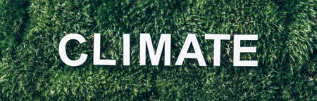 Word Climate on moss, green grass background. Top view. Copy space. Banner. Biophilia concept. Nature backdrop Stockfoto