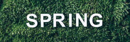 Word Spring on moss, green grass background. Top view. Copy space. Banner. Biophilia concept. Nature backdrop