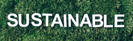 Word Sustainability on moss, green grass background. Top view. Copy space. Banner. Biophilia concept. Nature backdrop Stockfoto