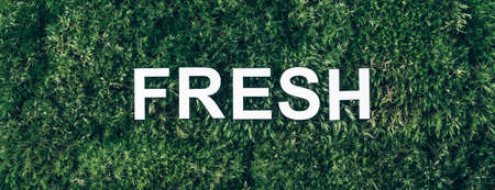 Word Fresh on moss, green grass background. Top view. Copy space. Banner. Biophilia concept. Nature backdrop Stockfoto
