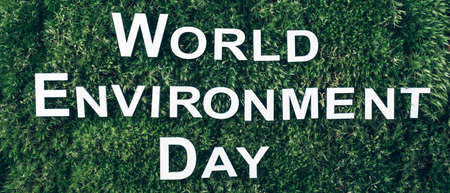 Inscription World environment day on moss, green grass background. Top view. Copy space. Banner. Biophilia concept. Nature backdrop. June 5th - World environment day concept.