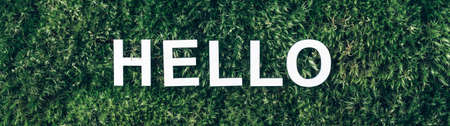 Word Hello on moss, green grass background. Top view. Copy space. Banner. Biophilia concept. Nature backdrop Stockfoto