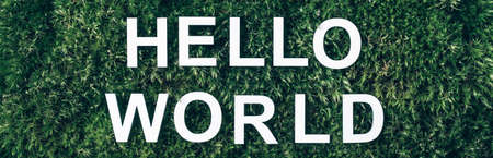 Inscription Hello world on moss, green grass background. Top view. Copy space. Banner. Biophilia concept. Nature backdrop Stockfoto