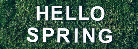 Inscription Hello spring on moss, green grass background. Top view. Copy space. Banner. Biophilia concept. Nature backdrop