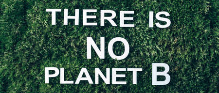 Inscription There Is No Planet B on moss, green grass background. Top view. Copy space. Banner. Biophilia concept. Nature backdrop