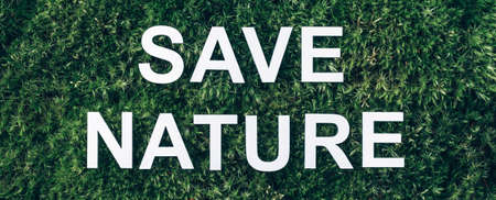 Inscription Save Nature on moss, green grass background. Top view. Copy space. Banner. Biophilia concept. Nature backdrop