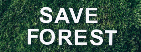 Inscription Save Forest on moss, green grass background. Top view. Copy space. Banner. Biophilia concept