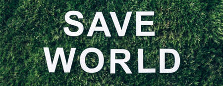 Inscription Save world on moss, green grass background. Top view. Copy space. Banner. Biophilia concept. Nature backdrop