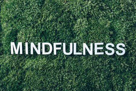 Word Mindfulness on moss, green grass background. Top view. Copy space. Banner. Biophilia concept. Nature backdrop Stockfoto