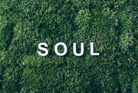 Word SOUL on moss, green grass background. Top view. Copy space. Banner. Biophilia concept. Nature backdrop. Body, mind, spirit and soul concept