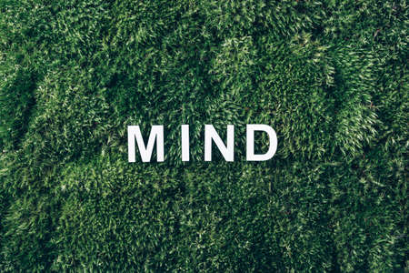 Word Mind on moss, green grass background. Top view. Copy space. Banner. Biophilia concept. Nature backdrop. Body, mind, spirit and soul concept