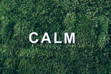 Word Calm on moss, green grass background. Top view. Copy space. Banner. Biophilia concept. Nature backdrop