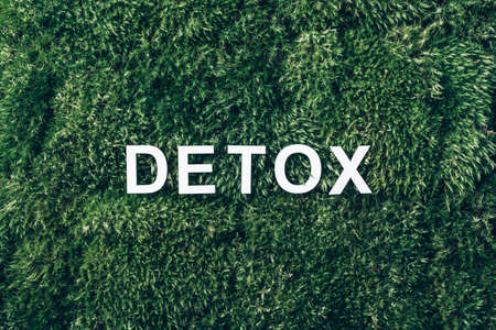 Word Detox on moss, green grass background. Top view. Copy space. Banner. Biophilia concept. Nature backdrop. Digital Detox. Free of Electronic Devices