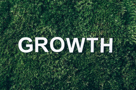 Word Growth on moss, green grass background. Top view. Copy space. Banner. Biophilia concept. Nature backdrop