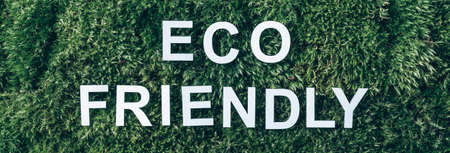 Inscription Eco friendly on moss, green grass background. Top view. Copy space. Banner. Biophilia concept. Nature backdrop Stockfoto