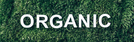 Word Organic on moss, green grass background. Top view. Copy space. Banner. Biophilia concept. Nature backdrop. Healthy diet, eco friendly lifestyle