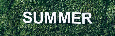 Word Summer on moss, green grass background. Top view. Copy space. Banner. Biophilia concept. Nature backdrop